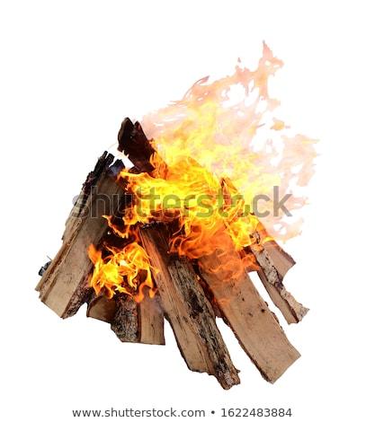Tűzifa egymásra pakolva durva közelkép kint természet Stock fotó © zhekos