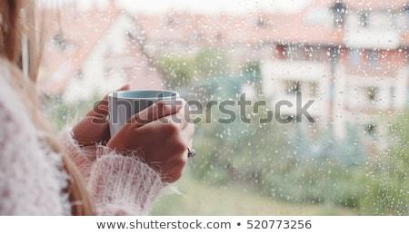 magányos · nő · iszik · kávé · reggel · felső - stock fotó © stevanovicigor