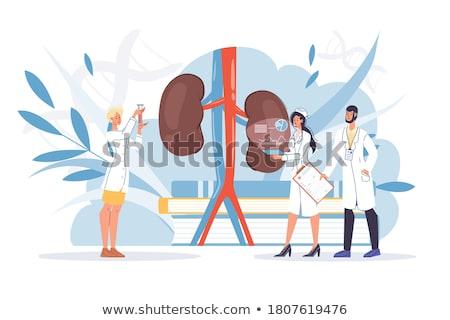 pyelonephritis diagnosis medical concept stock photo © tashatuvango