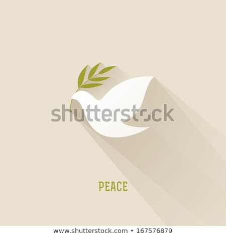 Galamb béke ikon olajbogyó levelek illusztráció Stock fotó © lenm