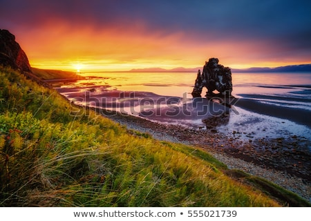 Rock attraction touristique Islande faible marée matin Photo stock © Kotenko
