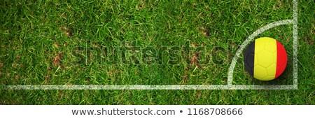 Football Allemagne couleurs terrain de football plan football Photo stock © wavebreak_media