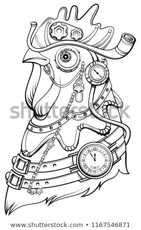 Kakas fej steampunk stílus szimbólum idő Stock fotó © orensila