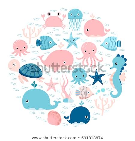 Underwater Sea Creature Frame Stockfoto © Pravokrugulnik