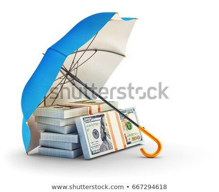 money and shield on white background. Isolated 3D illustration Stock photo © ISerg
