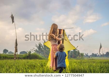 Anya fiú indulás papírsárkány rizsföld Bali Stock fotó © galitskaya