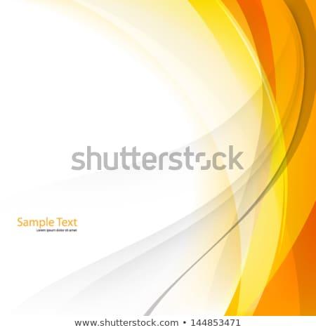 グラフィック 曲線 行 孤立した 情報 光 ストックフォト © robuart