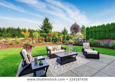 Backyard landscape stock photo © Freelancer
