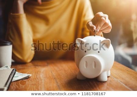 Aposentados casal piggy bank imposto pensão Foto stock © AndreyPopov
