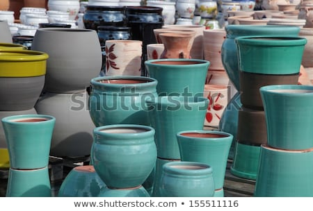 Variation of plants and flower pots in Mediterranean garden on the stairs Stock photo © brebca