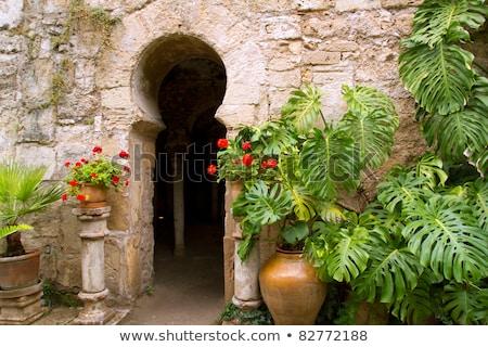 Arab öreg város belső építészet ünnep Stock fotó © lunamarina