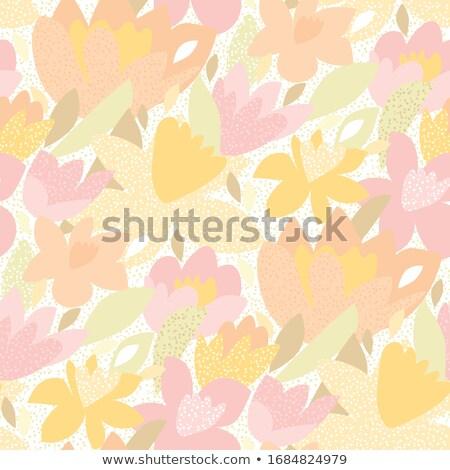 Mild yellow tulip Stock photo © nuttakit
