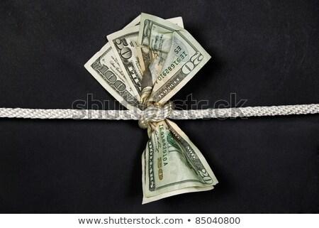 dolar · halat · yalıtılmış · beyaz · para · çalışmak - stok fotoğraf © leonardi