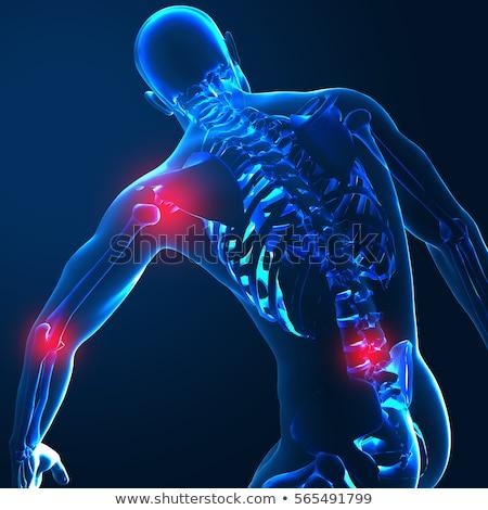 Dolor en el hombro azul humanos transparente fondo medicina Foto stock © wavebreak_media