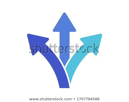 Zdjęcia stock: Trzy · opcje · strony · drogowego