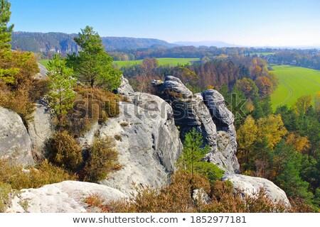 mountain Gamrig view  Stock photo © LianeM