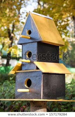 evleri · kuşlar · küçük · renkli · evler · barınak - stok fotoğraf © mybaitshop