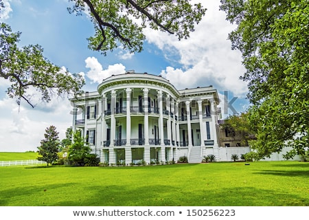 historic Nottoway plantation in Louisiana Stock photo © meinzahn