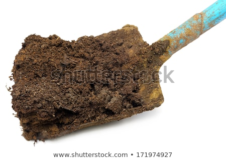 Closeup of cow manure with shovel Stock photo © bdspn