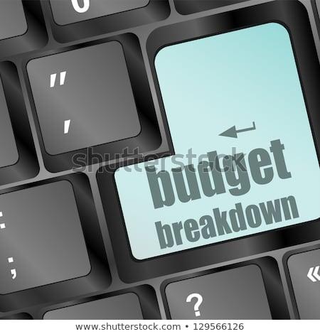 Budget Breakdown Words On Computer Pc Keyboard Сток-фото © fotoscool