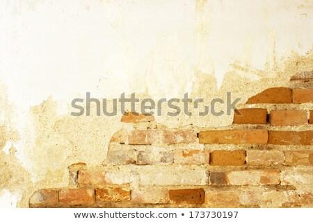старые · каменные · лестницы · вход · двери · улице - Сток-фото © hasloo