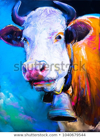Bright Cow Portrait Stock photo © olandsfokus