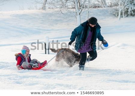 Lány szánkózás kutya tél Dánia gyerekek Stock fotó © jeancliclac