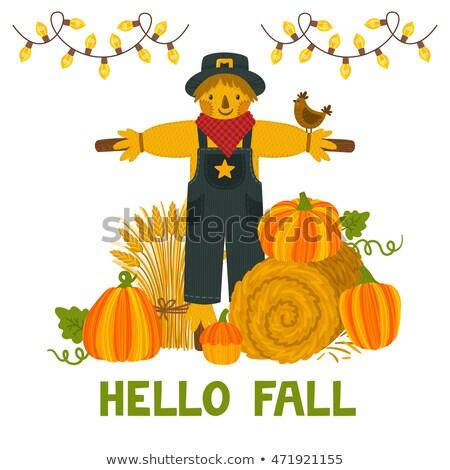 halloween · keret · sütőtök · madárijesztő · kép · illusztráció - stock fotó © irisangel