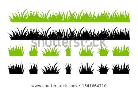 Stock photo: Horizontal grass silhouettes. EPS 10