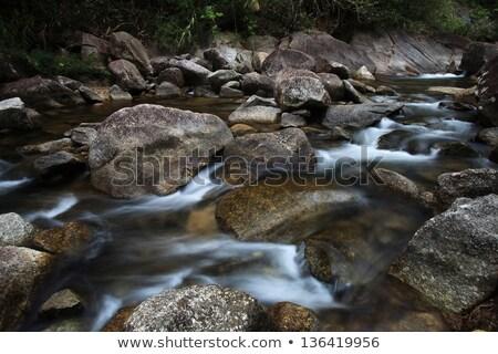 清浄水 岩 新鮮な ストリーム ストックフォト © clearviewstock