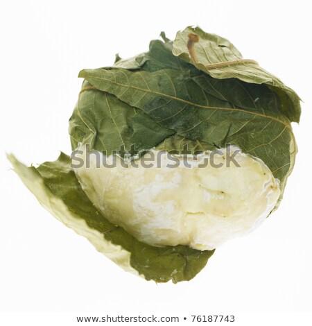 kaas · gezondheid · bladeren · binnenshuis · voeding · detail - stockfoto © phbcz