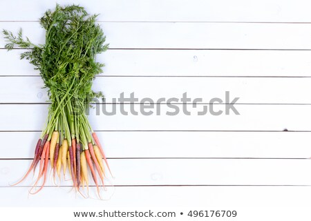 Bundle of whole carrots over white paneling Stock photo © ozgur