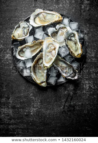 Fresh Oysters on Ice Stock photo © marilyna