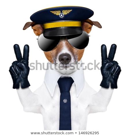 Funny anfitriona aeropuerto ilustración nina sonrisa Foto stock © adrenalina