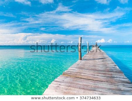 Yaz manzara çalı mavi gökyüzü gökyüzü çiçek Stok fotoğraf © vrvalerian