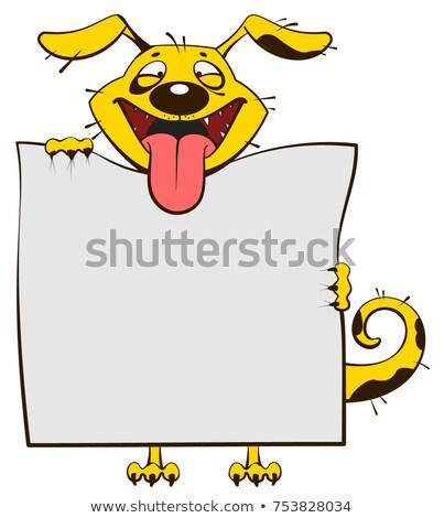 笑みを浮かべて 黄色 犬 白 シート ストックフォト © orensila