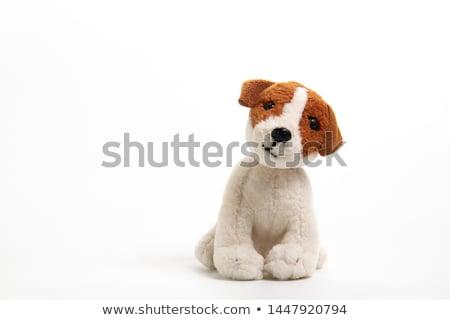 Plush dog Stock photo © FER737NG