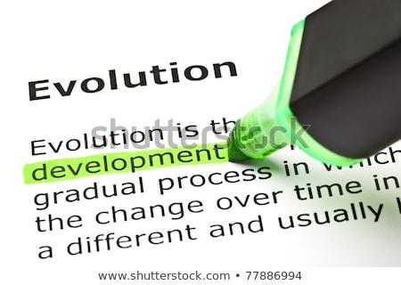 development highlighted under evolution stock photo © ivelin