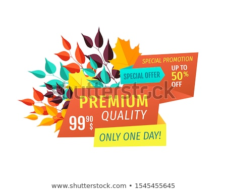 premium quality discount emblem with fall leaves stock photo © robuart