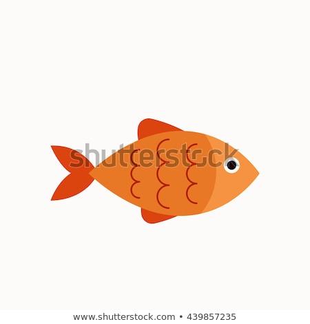 Fish flat concept icons Stock photo © netkov1