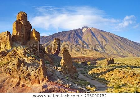 砂漠 · 風景 · 火山 · 公園 · テネリフェ島 · カナリア - ストックフォト © neirfy