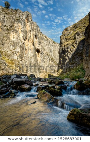 Creek flowing through beautiful gorge in Snowy Mountains Stock photo © lovleah