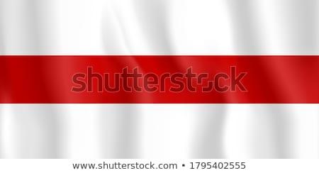 Беларусь флаг белый фон печать щетка Сток-фото © butenkow