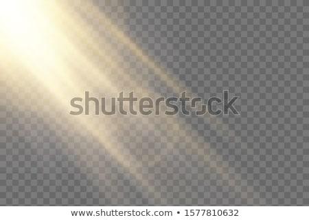 Sunrise. Sunlight special lens flash light effect on transparent background. Effect of blurring ligh Stock photo © olehsvetiukha