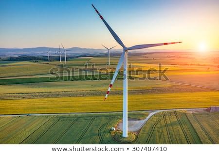 Agrarisch veld natuur industrie boerderij Stockfoto © elxeneize