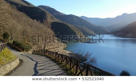 The dam of Ridracoli in Italy Stock photo © aladin66