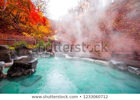 термальная ванна здоровья расслабиться горячей Азии духовных Сток-фото © leungchopan