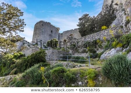Castillo camino superior montana atrás Foto stock © ruzanna