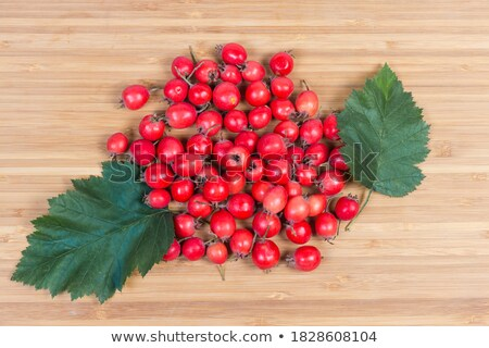 Small pile of haw berries Stock photo © digitalr