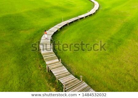 Woman walking on wooden bridge Stock photo © smithore